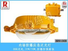 BR9100B内场防爆应急泛光灯