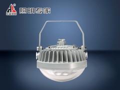 WF211J LED应急泛光灯
