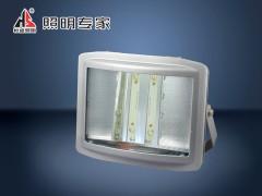 WF220LJ  智能LED应急灯